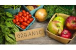 Fresh and Healthy Organic Products